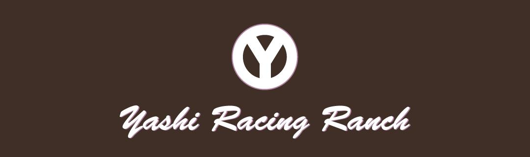 ヤシ・レーシングランチ