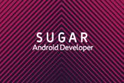 Paiza android developer