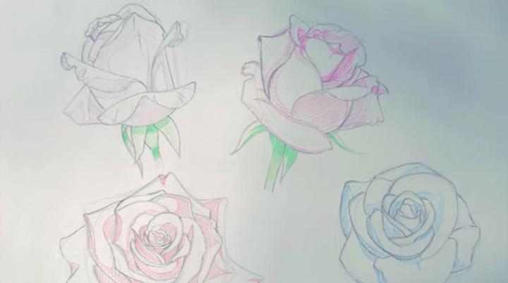 薔薇と花びらのイラスト