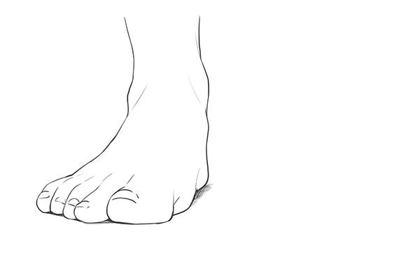 正面から見た足