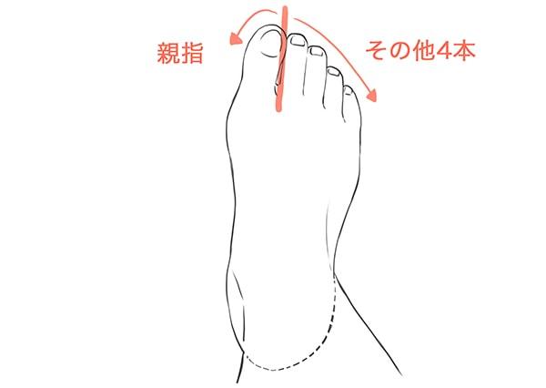 足の指のパーツ分け