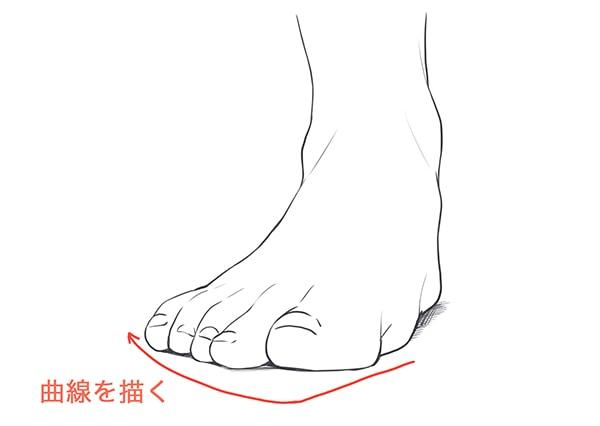 足の指が描くアーチ