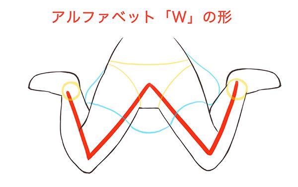 アルファベットのWの形