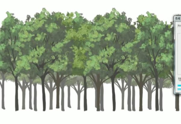 少し手前の木