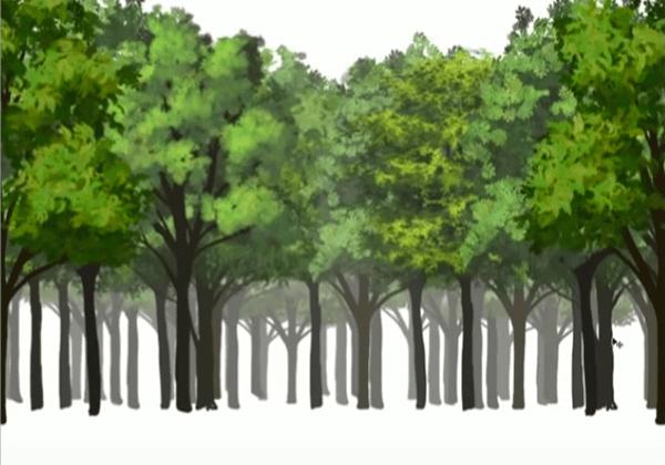 奥行きのある森を描く