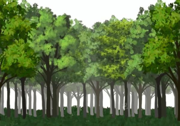 樹の根元の地面を描く