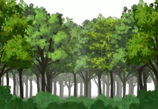 森全体を馴染ませる