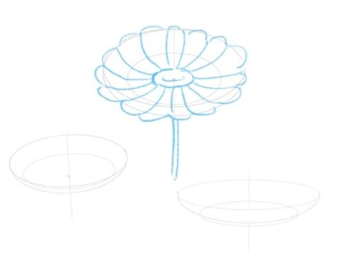 花びら・雌しべ・雄しべを描く