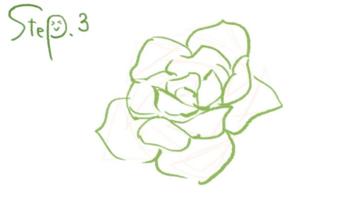 バラの花びらを描く