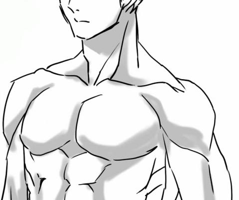 上半身の筋肉に影をつける