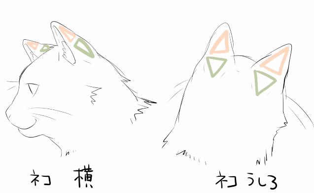 ネコの耳の描き方