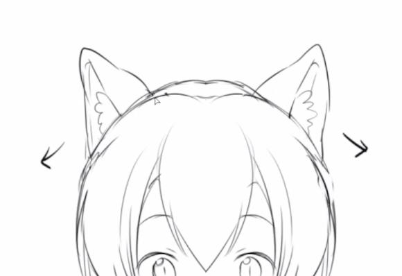 猫の耳の形
