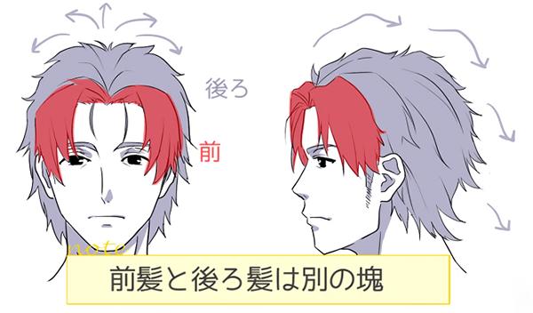 前髪と後ろ髪は別の塊