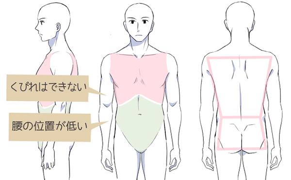 男女の大きな違いは腰