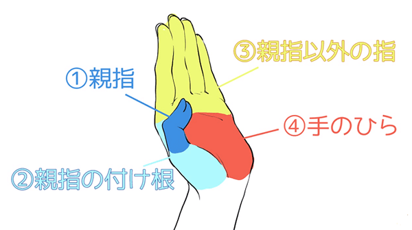 手を四つのパーツに分ける