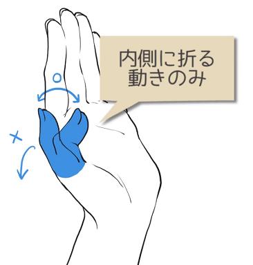 親指は内側に折る動きのみ