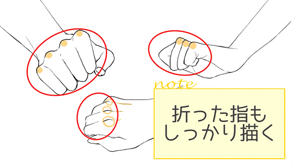 折った指もしっかり描く