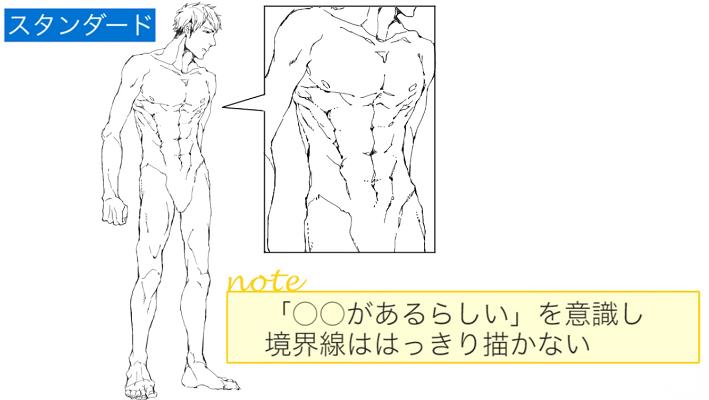 筋肉の境界線ははっきり描かない