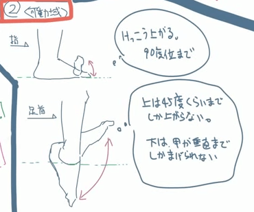 足の可動域