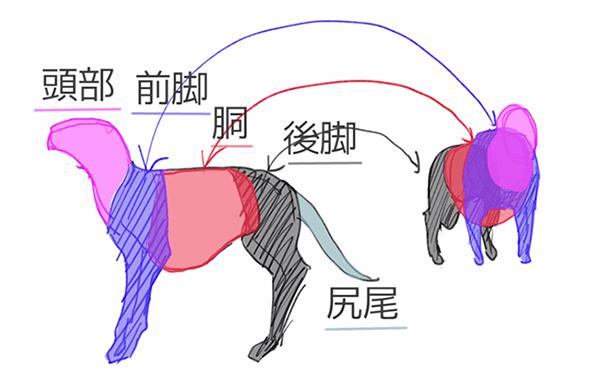 四足動物は五つのパーツに分けて描く