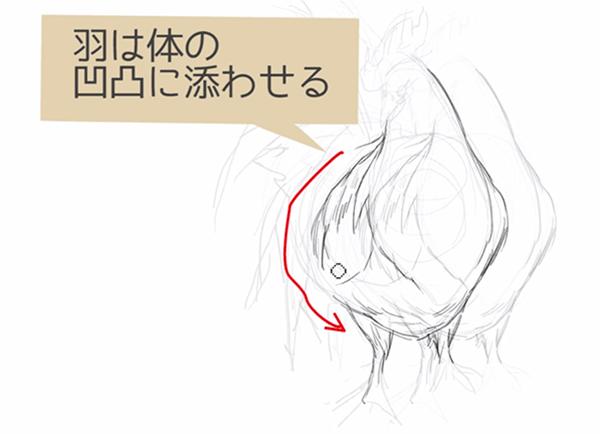 羽は体の凹凸に沿わせる