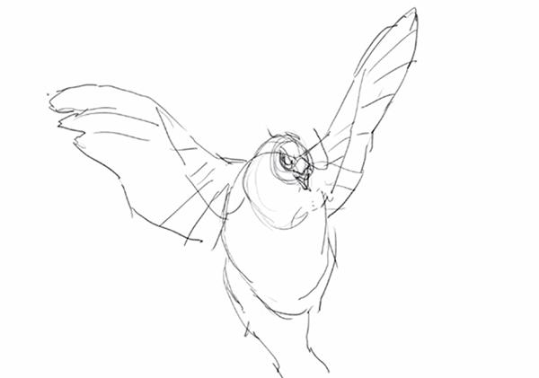 羽を小さく描く