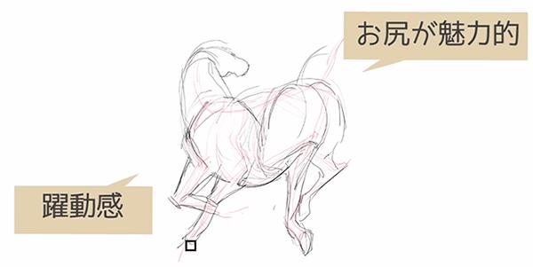 馬はお尻が魅力的