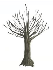 枝を書き加える
