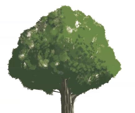 不透明度を変化させながら葉を塗る