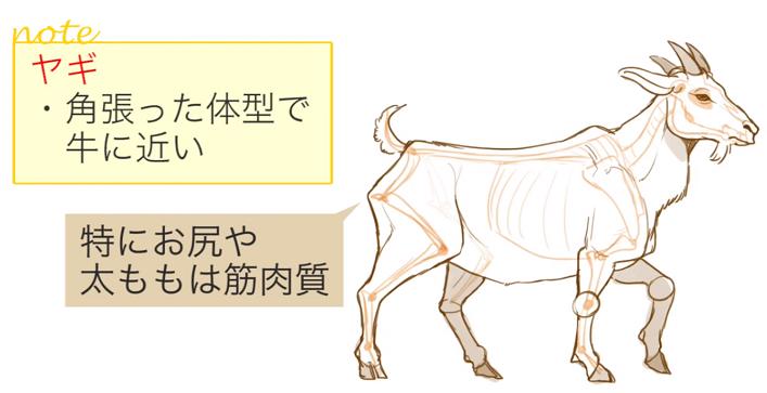 動物イラストの描き方講座の決定版似ている動物の描き方講座お絵かき