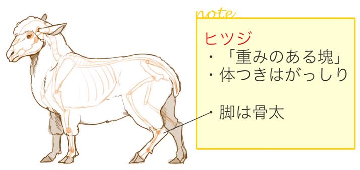 羊の体の特徴