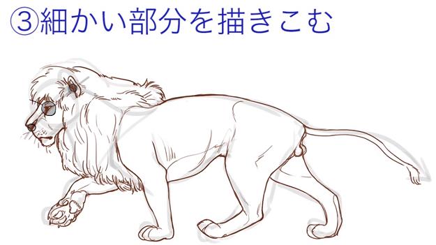 動物の体型を描く