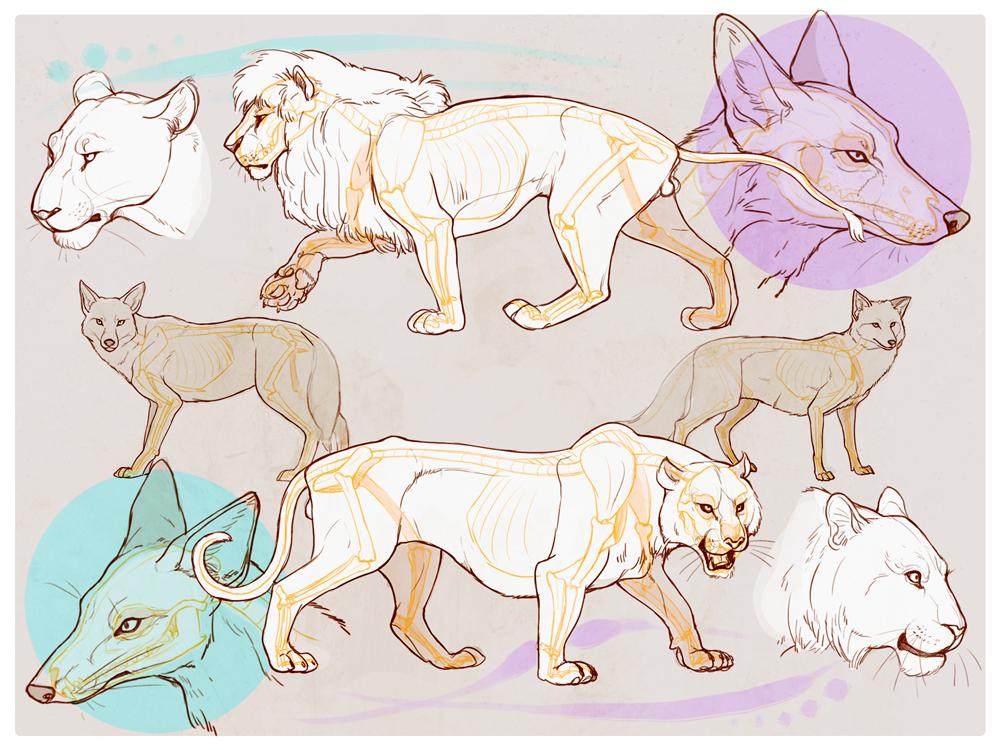 様々な動物の描き方講座