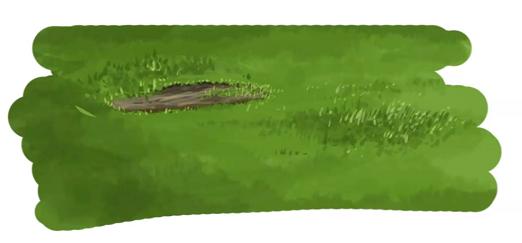 土部分を描く