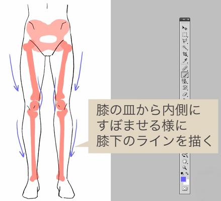 膝と膝下のラインを描く
