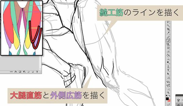 手前側の脚の描き方