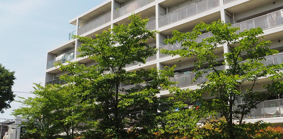 アパート・マンションの内装リフォーム・塗装・防水はお任せを!