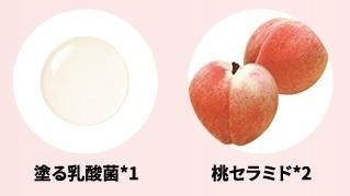 乳酸菌・桃セラミド
