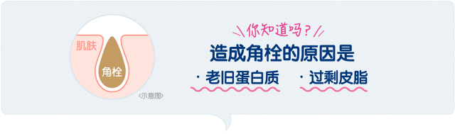 suisai中国語サイト_パウダーウォッシュN③