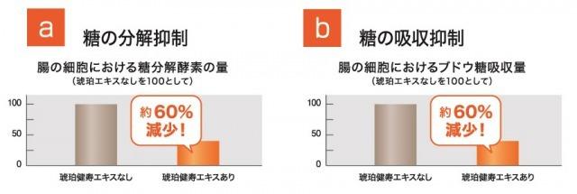 琥珀バイオテクノロジー公式HP_kenjyu_chapter2_2