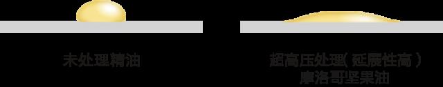 ルシードエル公式HP_EXヘアオイルアルガンオイル中国語3