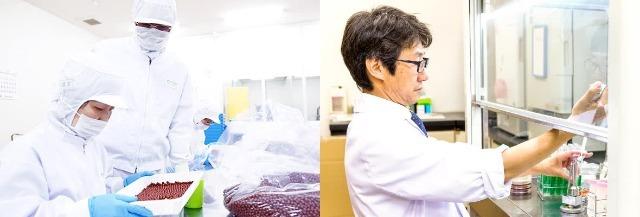 井藤漢方薬品公式HP_製造と品質管理