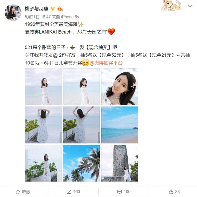 桃子与司康 投稿画像