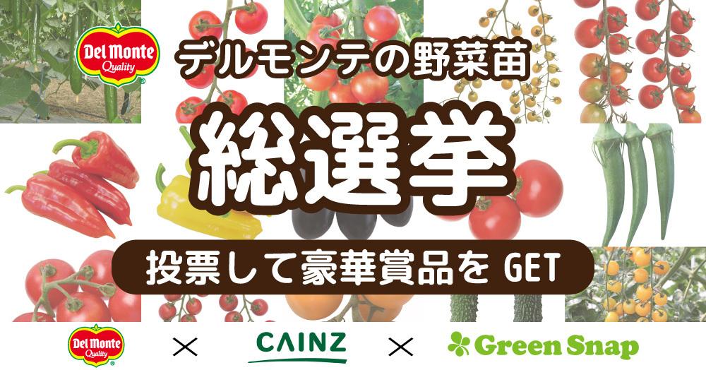 野菜苗総選挙★育てたい野菜に一票入れよう!キャンペーン!CAINZ×GreenSnap
