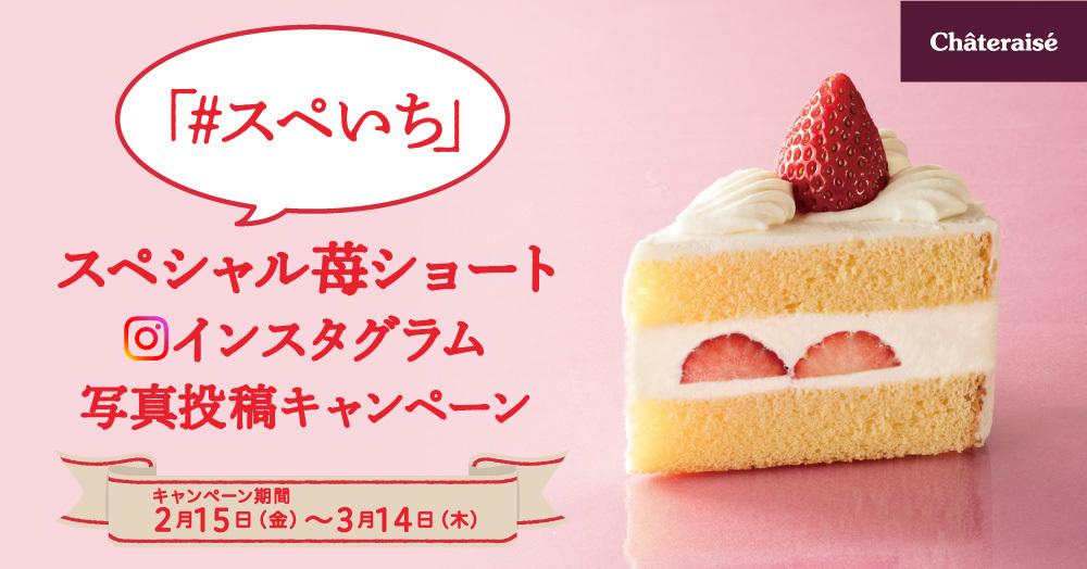 \#スペいち/シャトレーゼ「スペシャル苺ショート」インスタグラム投稿キャンペーン☆