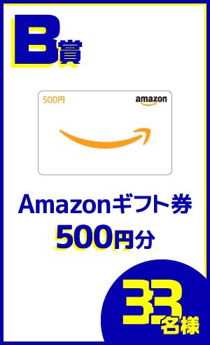 B賞:Amazonギフト券・・・33名様