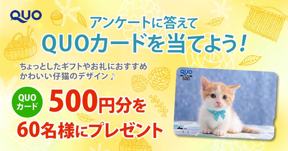 【QUOカードが当たる】アンケートキャンペーン