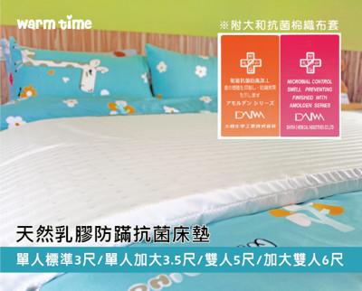 乳膠床墊 / 日本大和防蟎布套 - 加大雙人6X6.2尺【天然乳膠床墊】WARMTIME (4.5折)