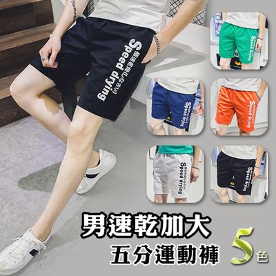 男速乾加大五分運動褲 (3.5折)