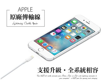 Phone iPad 系列 原廠 MFI認證 傳輸充電線 【D-I5-005】100cm裸裝正品 (2.4折)